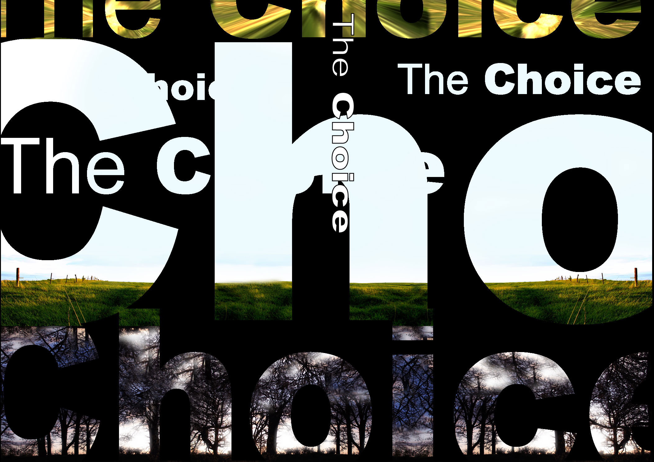 Choice-DVD-Cover
